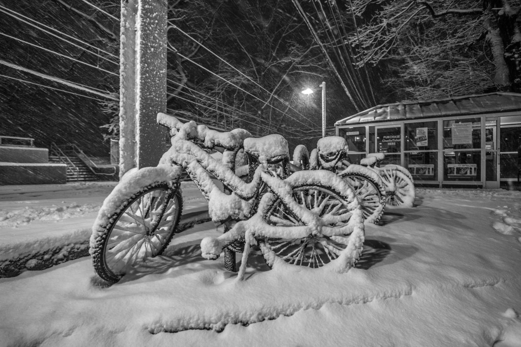 Snowy Bikes on the D Line