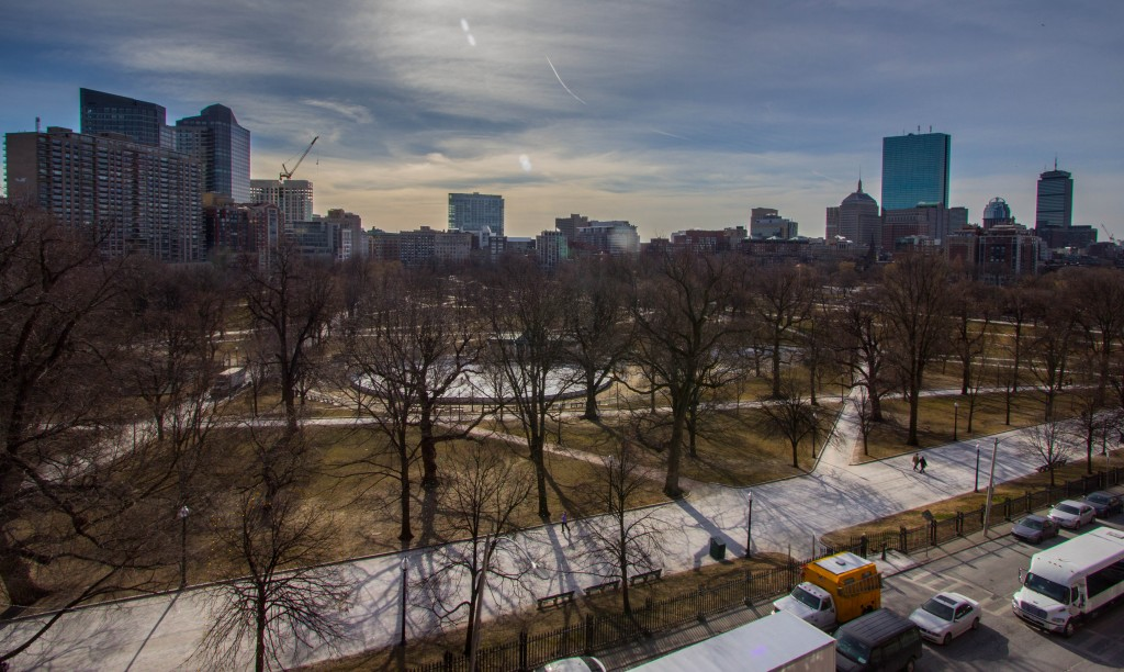 view of Boston Common
